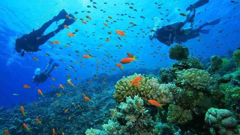 مکان های دیدنی که در تایلند باید از آنها دیدن کنید